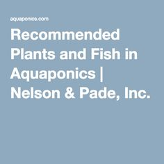 Recommended Plants and Fish in Aquaponics   Nelson & Pade, Inc.