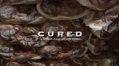 CURED by UM Media Documentary Projects. This short film by Joe York profiles Madisonville, Tennessee's world-renowned bacon and country ham producer Allan Benton.