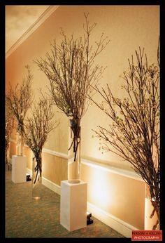 Branch Decor painted manzanita branches floral crafts birthdays weddings