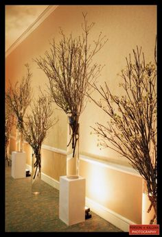 Craft food decor on pinterest branch decor branches for Tree branch decorations in the home