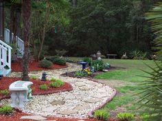 My backyard!