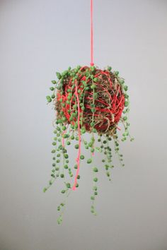 Neon Pink Hanging Moss Ball String Planter with by ThriftedandMade
