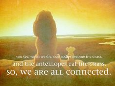 12 Best Lionking Quotes Images The Lion King Animation Character