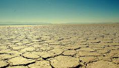 Esto es el desierto de Coahuila  locaciones Montenegro Prod    http://www.comefilm.gob.mx/directorios/name/salvador-montenegro-chibli/