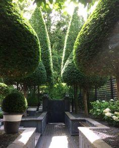 """Anouska Hempel on Instagram: """"A treetop tale.⠀⠀⠀⠀⠀⠀⠀⠀⠀ ⠀⠀⠀⠀⠀⠀⠀⠀⠀⠀⠀ Anouska Hempel garden design - a Adam, Liechtenstein.⠀⠀⠀⠀⠀⠀⠀⠀⠀ ⠀⠀⠀⠀⠀⠀⠀⠀⠀⠀⠀ #AHD #AnouskaHempelDesign…"""""""