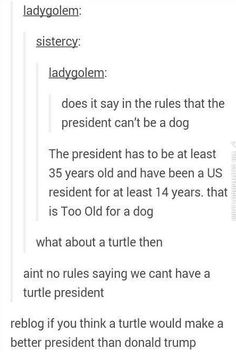 I'd vote for a turtle before I voted for Donald Trump. #turtlepower2016