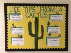 38 Ideas door decorations college res life ra boards for 2019 Nurse Bulletin Board, Counseling Bulletin Boards, College Bulletin Boards, Classroom Bulletin Boards, Ra Themes, Ra Bulletins, High School Counseling, Ra Boards, Bullentin Boards