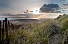 Reeds and sky Arran by Jamie Glenday
