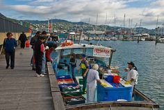 Flickr Finds: 15 Markets Around the World- Wellington, New Zealand