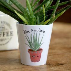 Aloe Handsome Plant Pot