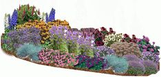 Perennial garden design plans