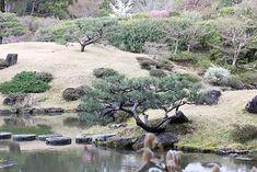 Oravanpesä: JAPANI 2016 osa 5: Nara Isuien