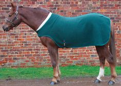 Comfort Zone Walker Lapel Rug Edgemere Ltd Equestrian Supplies Http Www
