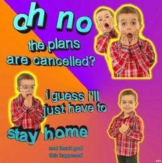 Super Funny Memes, Stupid Memes, Funny Relatable Memes, Stupid Funny, Fun Funny, Funny Pics, Hilarious, Lol, Response Memes