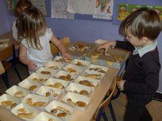 thema bakker - gebakjes sorteren. In elk bakje hetzelfde