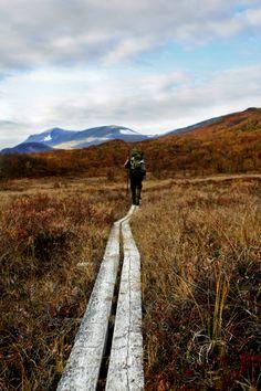 No Dia da Natureza, curta as trilhas ecológicas mais legais do mundo | Caia no Mundo