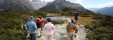 What to do in Milford Sound day walks