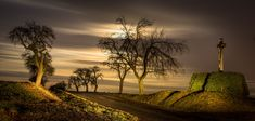 Full Moon, Vineyard, Country Roads, Celestial, Sunset, Nature, Outdoor, Harvest Moon, Outdoors