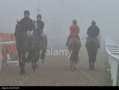 Cheltenham, Gloucestershire, UK. 13th March 2014. Race horses out for early morning ride as fog engulfs Cheltenham Races. © jules annan/Alamy Live News