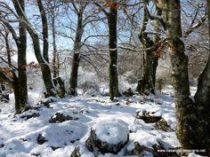 Resultado de imagen de Sierra de Urbasa