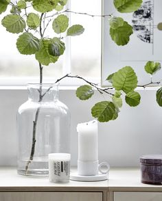 "167 gilla-markeringar, 3 kommentarer - House Doctor ApS (@housedoctordk) på Instagram: ""Welcome spring with beautiful glass vases and natures beauties 🌿 #housedoctordk"""
