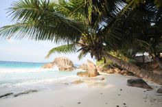 La Digue Les Seychelles, Adventure Travel, Beach, Water, Outdoor, Nice Beach, Vacation, Gripe Water, Outdoors