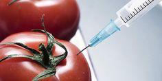 Nanotechnologie een bedreiging voor ons voedsel | De voedselindustrie doet veel onderzoek naar nanotechnologie. Nanosensoren kunnen waarschuwen voor besmetting of bederf. Nieuw verpakkingsmateriaal doodt bacteriën. Andere nanotechnieken geven smaak, maar geen calorieën aan het eten. Mijn vraag is zitten wij hier op te wachten en is dit geen deze nanotechnologie een bedreiging voor ons voedsel?...
