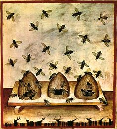 Le miel, nourriture des dieux | Bienfait de la nature, don du Ciel, sirop de vie, nectar divin, rosée des astres, liqueur dorée… Par sa nature solaire, sa douceur et sa vertu à guérir les mortels, le miel évoque la sagesse divine et la vie éternelle. Il était réputé autrefois comme une substance merveilleuse et l'abeille comme une créature sacrée... zimzimcarillon.canalblog.com | Illustration du Tacuinum sanitatis XIVème siècle, une ruche.