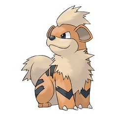 Growlithe - 058 - Very friendly and faithful to people. It will try to repel enemies by barking and biting. It has a brave and trustworthy nature. It fearlessly stands up to bigger and stronger foes. @PokeMasters