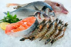 The Health Benefits of Seafood - Triple F