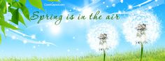 Spring Is In The Air Dandelions Facebook Cover CoverLayout.com