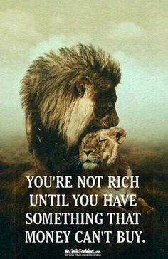 You're not rich until you have something that money can't buy life quotes quotes quote life rich true quotes life quotes and sayings life images life image Lion Quotes, Quotes With Lions, Animal Love Quotes, Inspiring Quotes About Life, Quotes Inspirational, Family Motivational Quotes, Powerful Quotes About Life, Happy Family Quotes, Happy Marriage Quotes