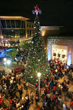 60 Christmas In Austin Ideas Christmas Austin Texas Christmas