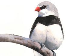 Bird watercolor painting original watercolor by ArtbyIsaFerreira