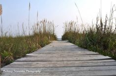 Walk to the most perfect beach… need to find wood planks for mexico beach wedding