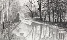 Image result for david hockney charcoal drawings