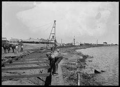 008676PD: Foreshore improvements, Carnarvon, 1911 http://encore.slwa.wa.gov.au/iii/encore/record/C__Rb2944236?lang=eng