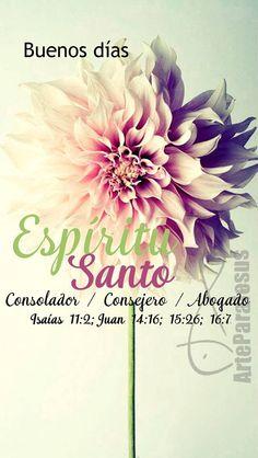 Juan 15:26 Pero cuando venga el Consolador, a quien yo os enviaré del Padre, el Espíritu de verdad, el cual procede del Padre, él dará testimonio acerca de mí. ♔