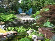 Grădina acvatică în amenajările peisagistice