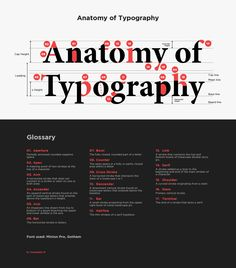Anatomy of Typography - Typography.id