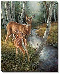 Birch Creek-Deer Canvas Wrap by Millette