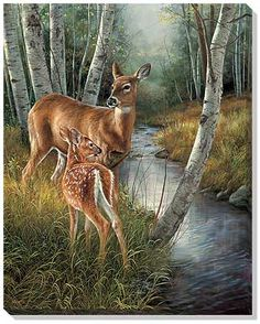 Birch Creek-Deer Canvas Wrap by Millette