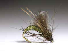 Caddis_Emerger_Olive