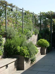 Stanze verdi - AG & P greenscape - Terrasse Rooftop Garden, Balcony Garden, Garden Spaces, Pergola Shade, Diy Pergola, Pergola Kits, Penthouse Garden, Landscape Design, Garden Design