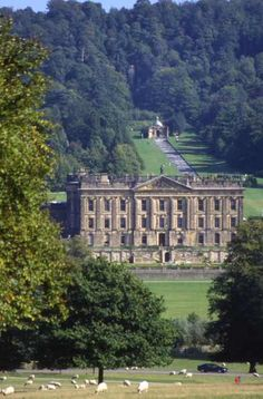Chatsworth - where my son learned to ride his bike and where we fed chickens with the Duchess...
