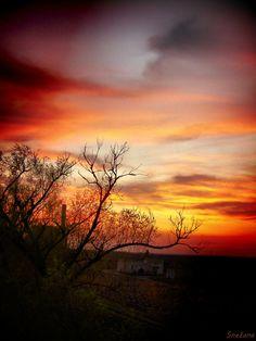 """500px / Foto """"... pinta as cores do arco-íris em dia os momentos para se lembrar ..."""" por mmmrvica :)"""