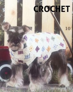 Square crochet sweater for dogs