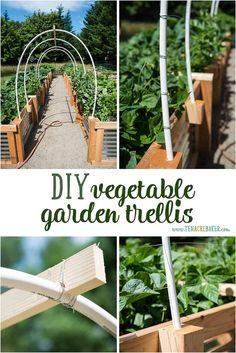 Superieur Create A Beautiful Arch Between Your Raised Beds With This Easy And  Effective DIY Vegetable Garden Trellis Using PVC, Wire, And Wood.
