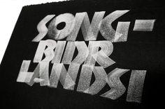 Galería Neuland 2014 – Silvia Cordero Vega – Calligraphy artist Lettering Styles, Brush Lettering, Hand Lettering, Typografi, Calligraphy Letters, Handwriting, Script, Roman, Fonts