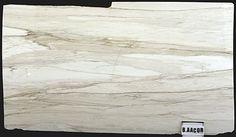 Olympia Tile + Stone - Slab Division calacatta